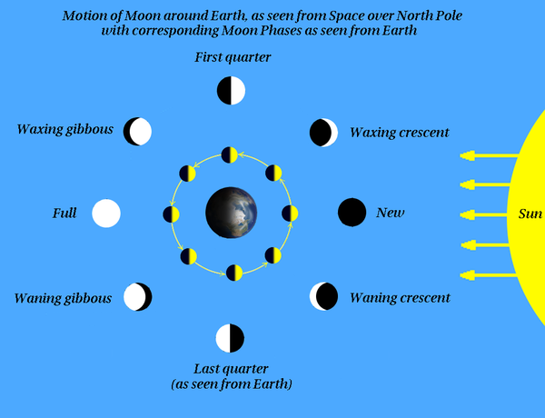 Moon phases 20120222.png