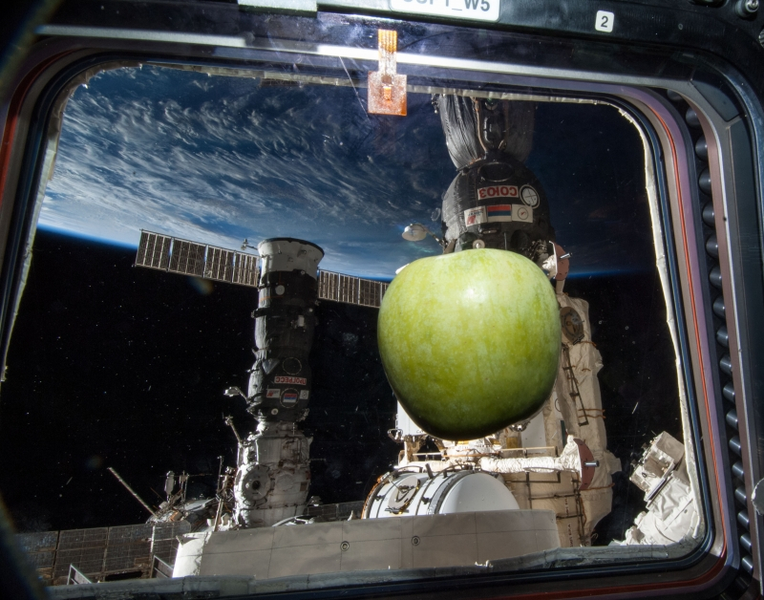File:Earth iss apple window 038e042112 sm.png